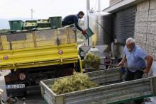 <p>U Hercegovini se proizvode vrhunska i kvalitetna vina koja osvajaju brojne nagrade na međunarodnim sajmovima</p>