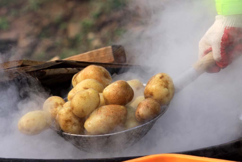 <p>Krumpir (ilustracija)</p>